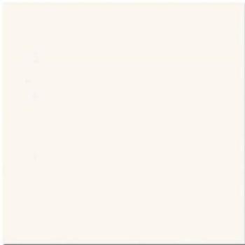 Revestimento 10x10 Branco Brilhante Tipo A - Ref.BR10010 -TECNOGRES