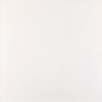Piso 60x60 HD Clássico Branco Brilho Tipo A - Ref.40263E - POINTER