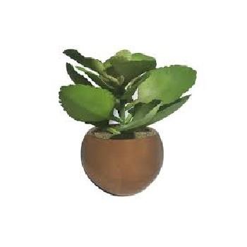 Folhagem Suculenta Verde 16cm Vaso Cobre - Ref.35143001 - FLOR ARTE