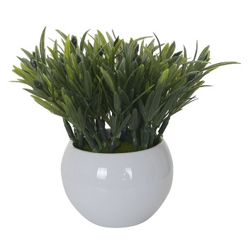 Flor Podocarpus 13cm Vaso Verde - Ref.32126001 - FLOR ARTE